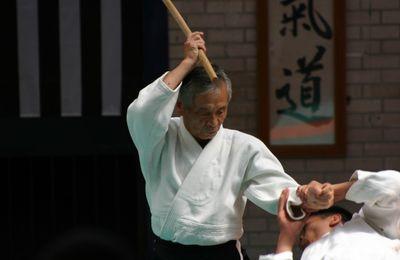 Aïkido, le courage de tester ses hypothèses