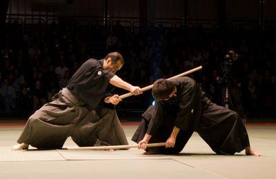 Le kata, réflexions d'un chercheur et opinions de maîtres