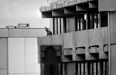5 septembre 1972 - Prise d'otages sanglante aux JO de Munich