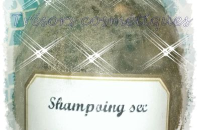 Shampooing sec pour cheveux normaux