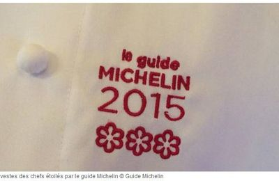 Le Guide Michelin 2015