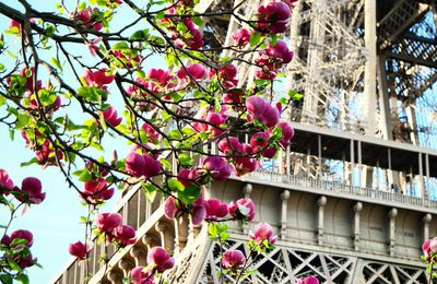 Un printemps à Paris