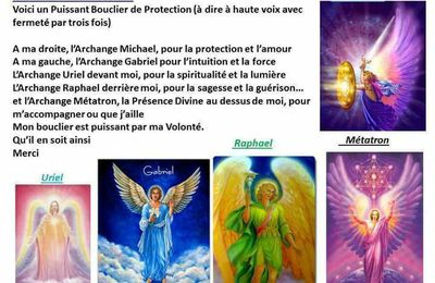 Bouclier de protection ...