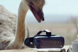 Samsung, la pub avec une curieuse autruche qui porte un casque de réalité virtuelle...et qui vole!