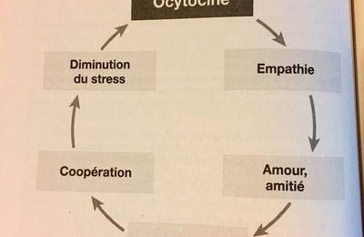 L'ocytocine : le rôle essentiel de cette hormone de l'amour dans l'épanouissement de toute la famille