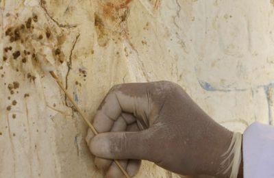 Découverte à Saqqara de la dernière demeure de Paser, chef de la diplomatie de l'époque ramesside, en Égypte ancienne !