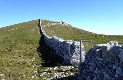 Du col de Marchairuz au Mont Tendre