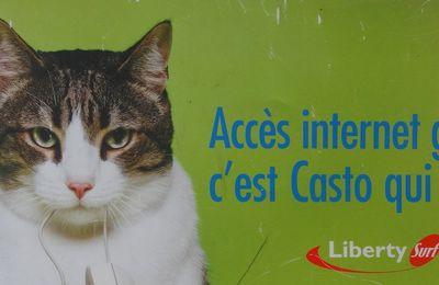 Bestiaire de la pub > Le chat & la souris > Castorama & Liberty surf