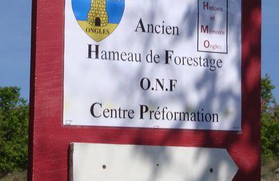 Association des amis de la Maison Histoire et Mémoire d'Ongles (04)