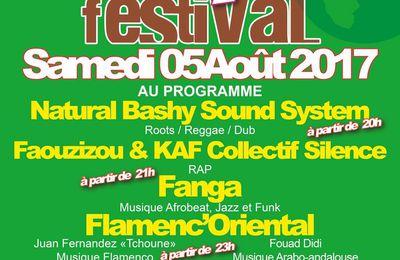 Music festival L'Fichta  Samedi 5 Août 2017 Peyrolles-en-provence Jouques (13)