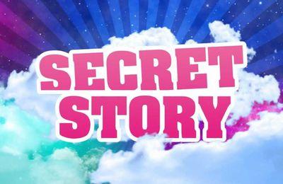 Qui sera le nouvel animateur de Secret Story ? Réponse ICI