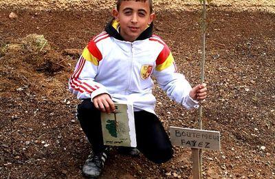 """""""Du livre à la forêt"""": Planter un arbre aujourd'hui pour cultiver les citoyens de demain..."""