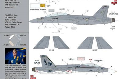 "Demo ""Hornets"" - 75 years VFA-15 ""Valions"" & VFA-122 ""Flying Eagles"" Marine Capt Jeff Kuss memory"
