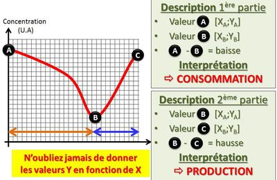 Analyser un graphique