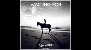 Thiago Tanaka - Waiting For (SiR. WHAT! Remix)