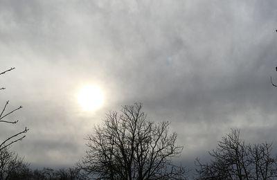 Ciel d'hiver au soleil brouillé...