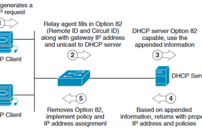 Using DHCP and DHCP Option 82