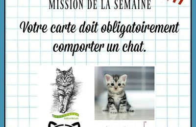 DEFI PASSION CARTES CREATIVES 490... Chat alors !