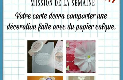 DEFI 496 DE PASSION CARTES CREATIVES