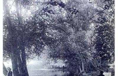 Promenade découverte des bords de Marne à Chelles