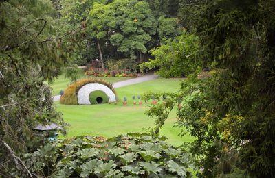 Un regard au Jardin