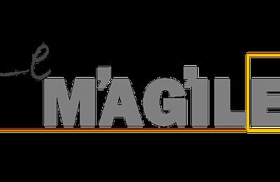 Le Magile :  Chapitre 2, Les concepts Agile