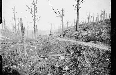 Les Isséens tués à Verdun 2/2.
