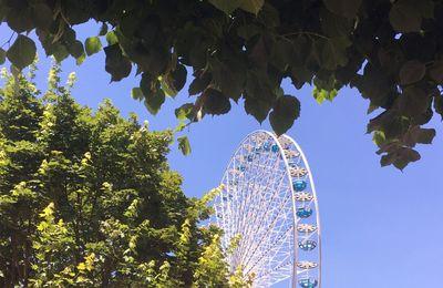 Roue des Tuileries - été 2016 - 1er