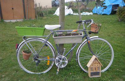 jardinière vélo