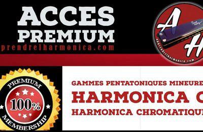 Les gammes pentatoniques mineures - Harmonica C et Harmonica chromatique