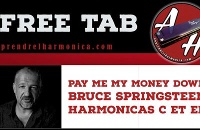 Pay me my money down - Bruce Springsteen - Harmonicas C et Eb