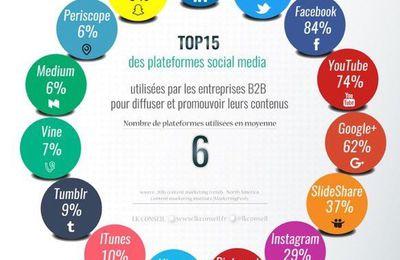 Social média  / Web : le top 15 des plateformes pour les entreprises BtoB