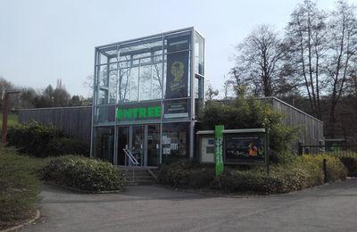 Mon stage au Jardin Botanique de Villers