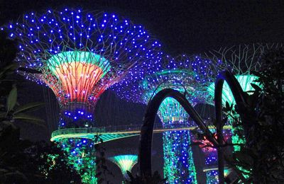 Supertree grove by night Son et lumière Singapour