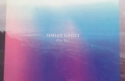 Simian Ghost : The Veil #RevueCD