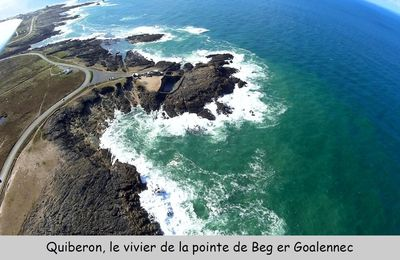 Photos aériennes de Quiberon