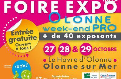 Foire Expo 2017 d'Olonne sur Mer