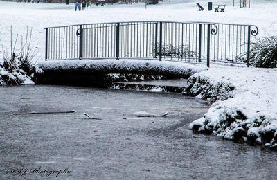 hiver sur le parc de Wolvendael