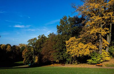 Parc de Wolvendael