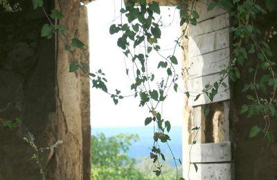 Vue sur les toits d'Eygalières