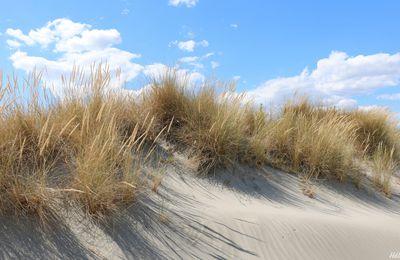 Dune, sable, impression fugitive
