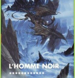 L'assassin royal, tome 12 : L'homme noir - Robin HOBB