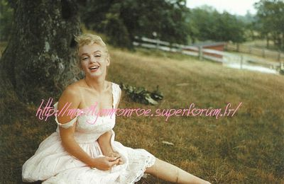 Album de photos : Marilyn star couleurs