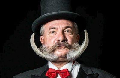 le moustachu du jour (170)