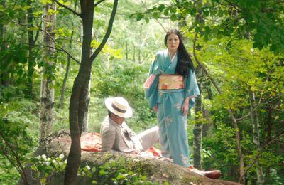 """"""" Mademoiselle"""" de Park Chan-Wook...ou quand le cinéma sublime et transcende l' art romanesque"""