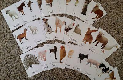 Cartes de nomenclatures des animaux de la ferme