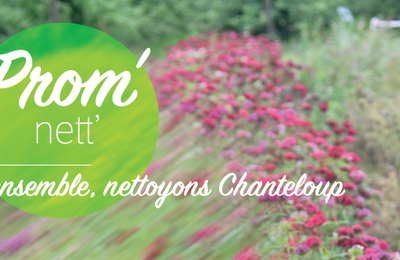 Prom'nett' : Ensemble, nettoyons Chanteloup