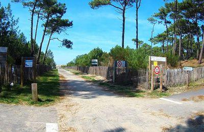 De Lespecier à Contis : entre dune et forêt...
