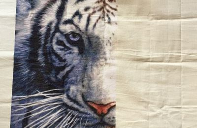 white tiger page 20 et 21/36