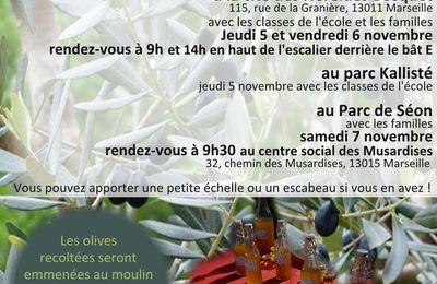 Presentation de l 39 association des jardins pour tous for Tous aux jardins
